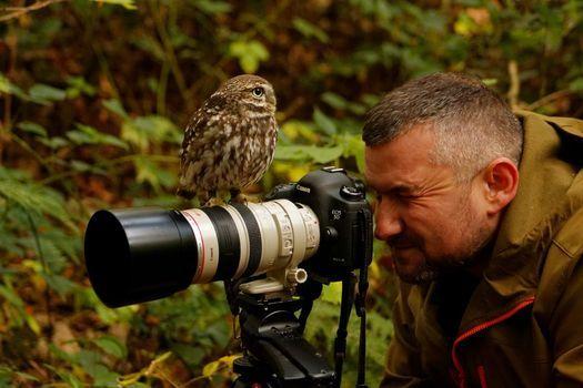 Birds of Prey Photography Workshop, 6 November | Event in Lanchester | AllEvents.in