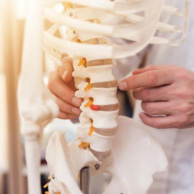 FREE Spinal Health Check