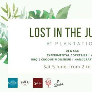 Lost in the Jungle Plantation