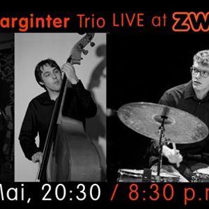 Michael Marginter Trio LIVE at ZWE