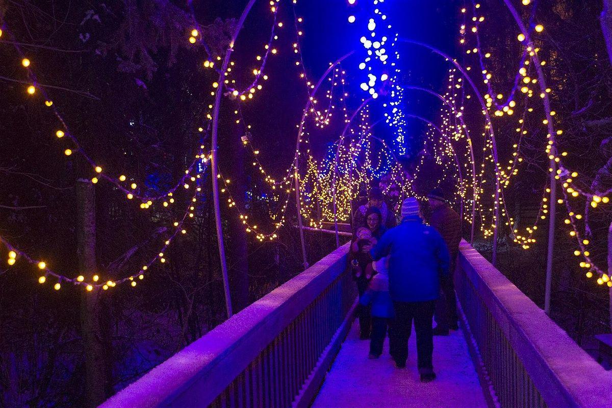 zoo lights fresno 2020