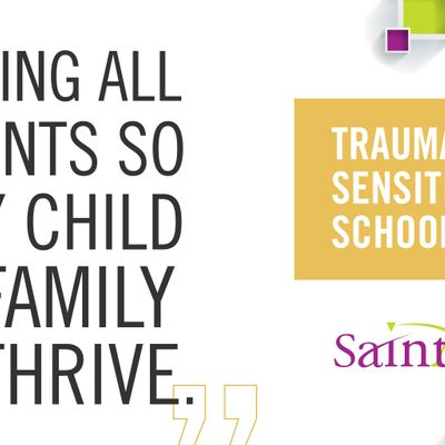 Re-Certification for 7ei of Trauma Sensitive Schools - Train the Trainer