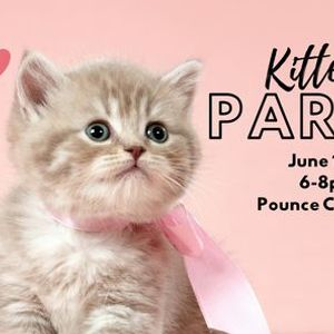 Kitten Party at Pounce Cat Cafe