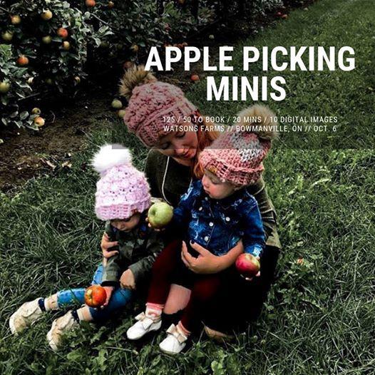 Apple Picking Minis