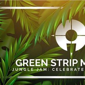 Green Strip Market 2019 & BBQ Jungle Jam Celebrate The Summer