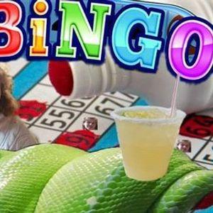 Rosies bingo nights w yokin and lux18