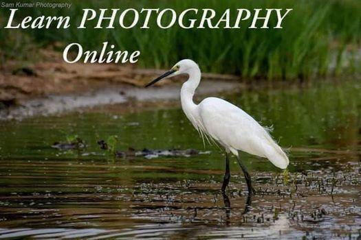 Basic Photography - Online Workshop, 6 November   Online Event   AllEvents.in