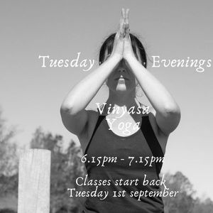 Tuesday Evenings - 4 Casual Yin Yoga classes