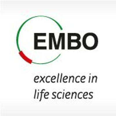 EMBO - excellence in life sciences