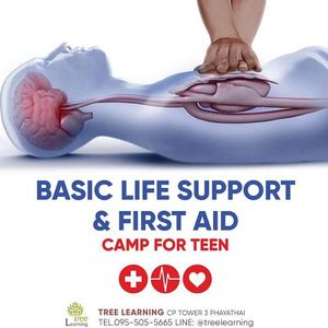 Basic Life Support  CNX