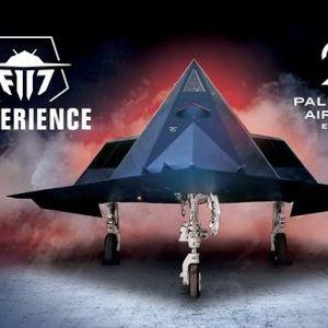 F-117 Flight Experience