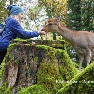 Familienausflug Tierpark Arth-Goldau