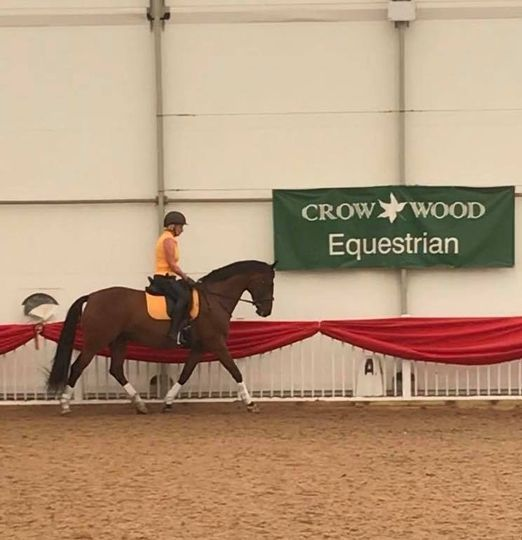Dressage training at Crow Wood Equestrian, 21 November | Event in Burnley | AllEvents.in