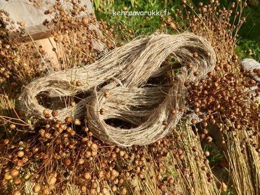 Loukutusta, lihtausta ja häkilöintiä – Korteniemen perinnetilan pellavatalkoissa pääsee käsiksi vanhan ajan työtapoihin