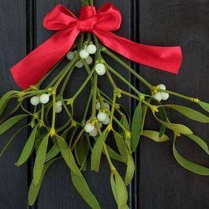 Mder Under The Mistletoe - Mder Mystery
