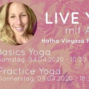 Live Hatha Vinyasa Basics Yoga