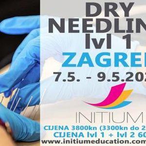 Dry needling lv1
