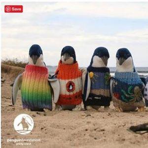 Knit a Penguin Jumper Bombed Yarns September Challenge