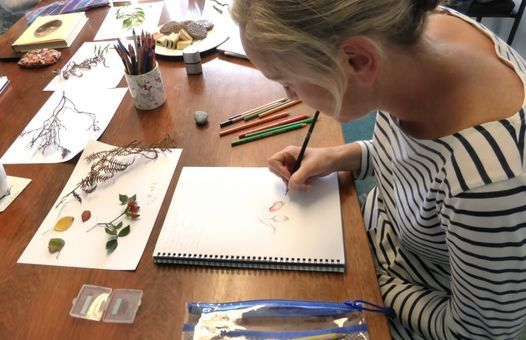 """Drawing and Painting Classes """"Inspired by Nature"""" - with Julie H, 7 November 
