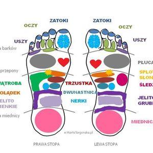 Refleksologia stp