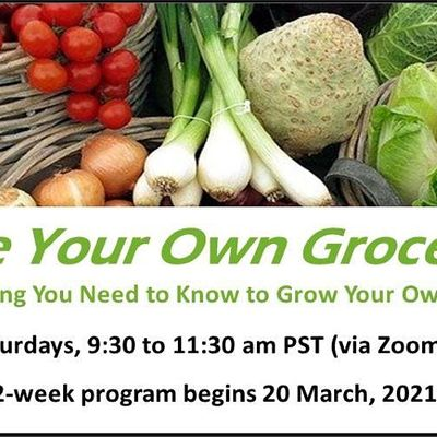 Be Your Own Grocer - Class 9 Preserving Your Bounty