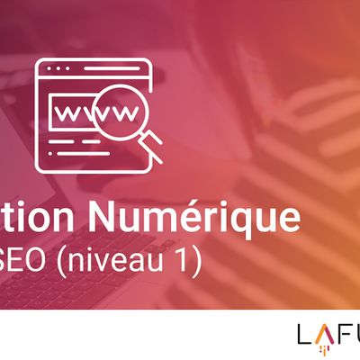 Formation SEO  Rfrencement Naturel (Niveau 1) - Classe Virtuelle