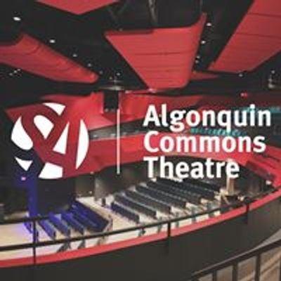 Algonquin Commons Theatre
