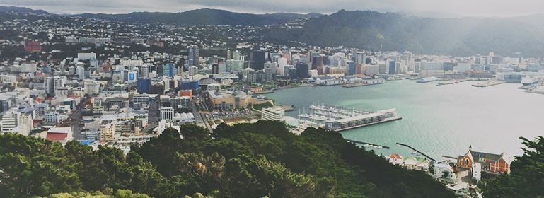 Beyond Te Papa From Tip-Site to Flourishing Forest
