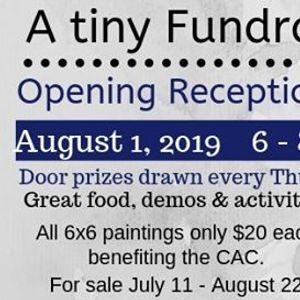 A Tiny Fundraiser - August 1 2019