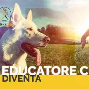 Corso Educatore Cinofilo - Modena