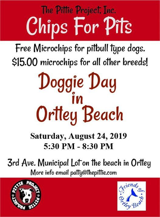Chips for Pits in Ortley at 3rd Ave, Ortley Beach, Seaside Heights