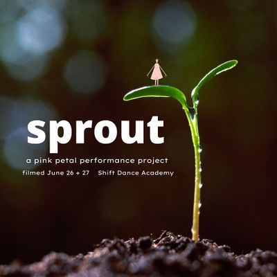 sprout (a pink petal performance project)