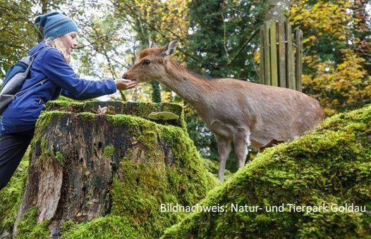 Familienausflug Tierpark Arth-Goldau, 29 May | Event in Kloten | AllEvents.in