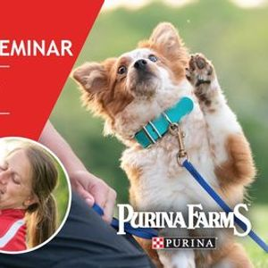 Online Canine Trick Seminar