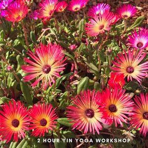 Tuesday Evening Yin Yoga Workshop - Spring Clean Body & Mind
