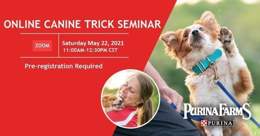 Online Canine Trick Seminar, 22 May | Online Event | AllEvents.in