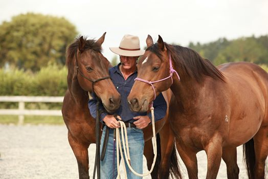 Introduction to Horsemanship clinic - Russell Higgins Chch