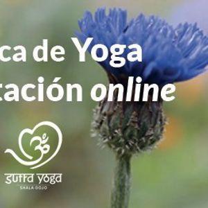 Practica de Yoga y Meditacin guiada online