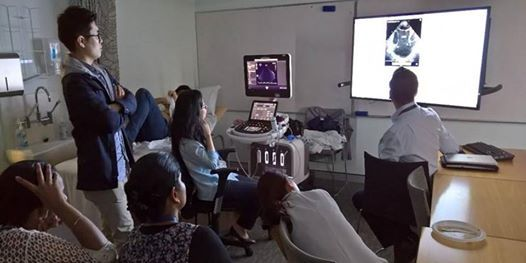2019 Cardiology: Back to the Basics Course at Blacktown