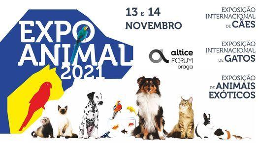 Expo Animal 2021, 13 November | Event in Braga | AllEvents.in