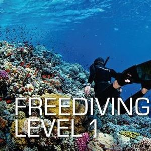 SSI Freediving Level One Course