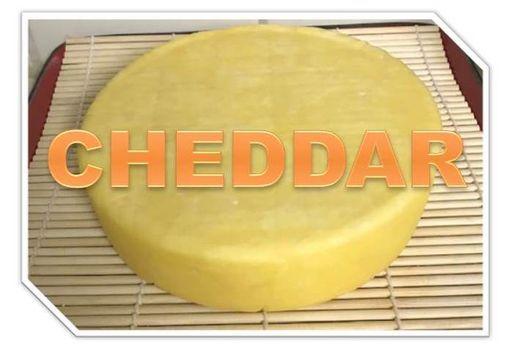 Cheesemaking - Cheddar, 5 December | Event in Sacramento | AllEvents.in