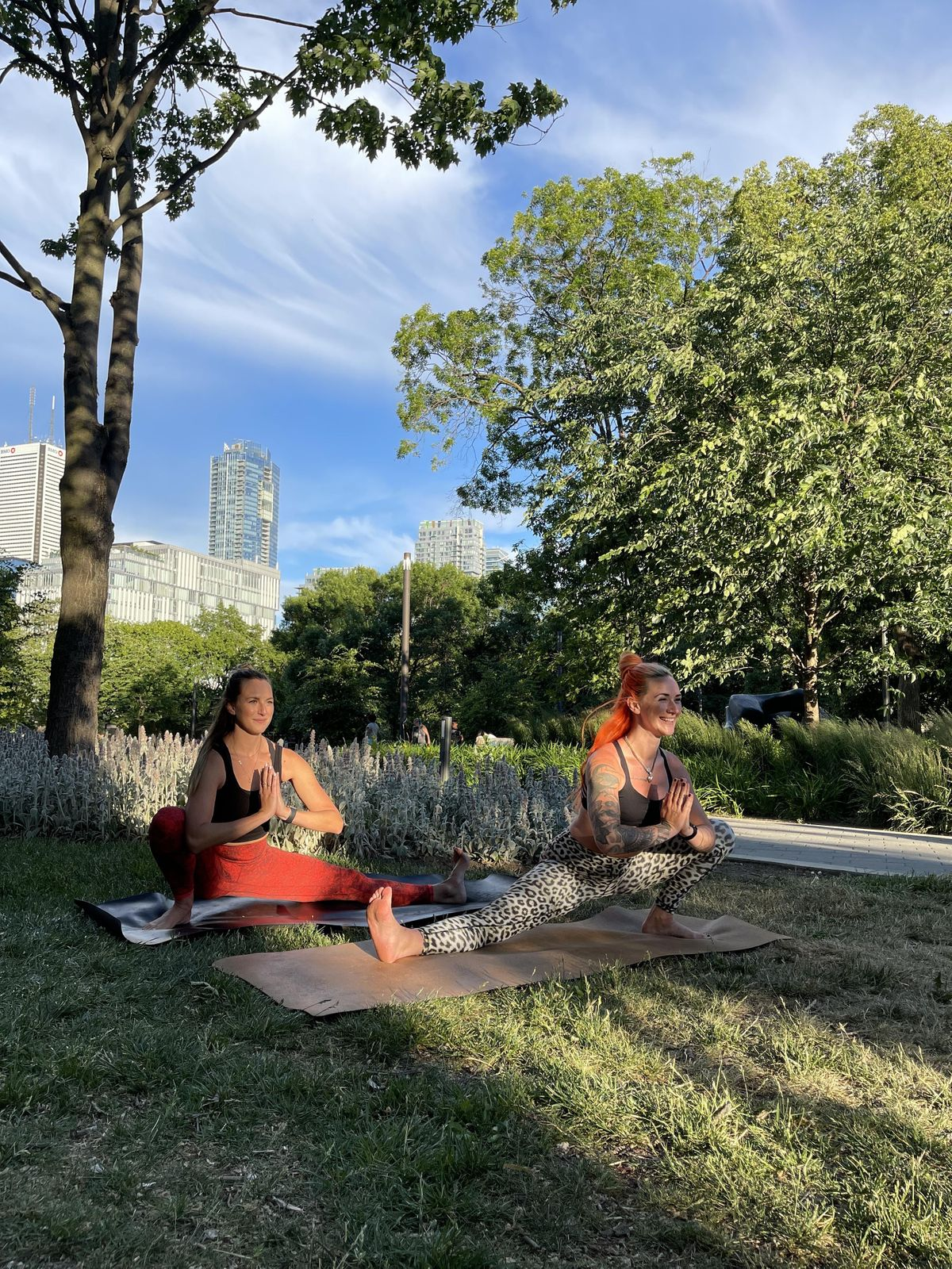 Yoga in the Park   Event in Toronto   AllEvents.in