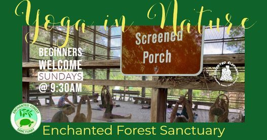 Yoga in Nature at the Enchanted Forest Sanctuary | Event in Titusville | AllEvents.in