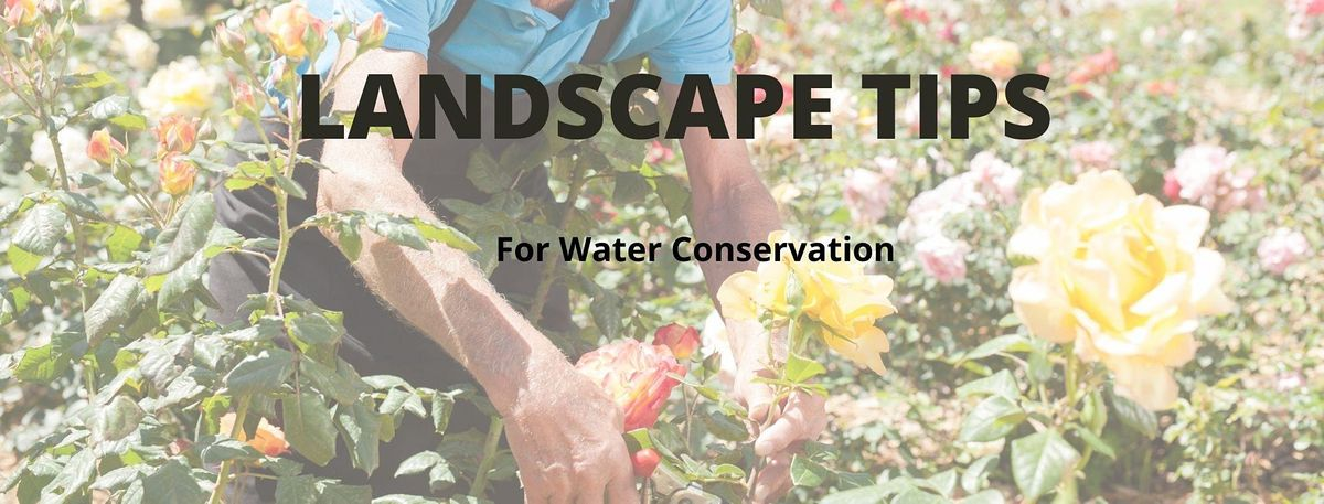Landscape Tips for Water Conservation, 26 October   Event in Palmetto   AllEvents.in