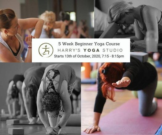 5 Week Beginner Yoga Course starting 13th of October