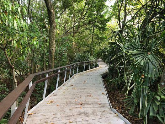 Coastal Walk & Yoga | Event in Singapore | AllEvents.in