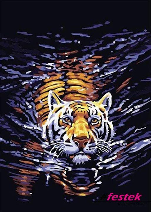 Társkereső tigris