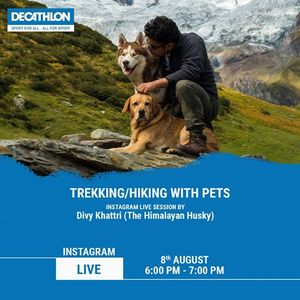 Trekking Hiking with Pets