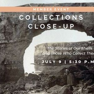 Collections Close-Up  Member Event